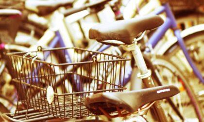 Derubata della borsa tenuta nel cestino della bici, la vittima riconosce e denuncia i ladri